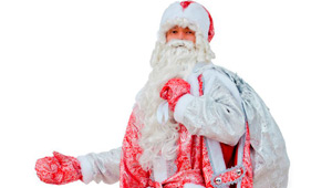 Дед Мороз на дом
