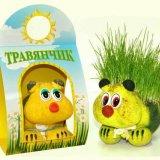 Мастер-класс по созданию травяничков