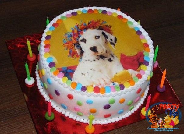 Где можно купить фото картинки для торта в киеве